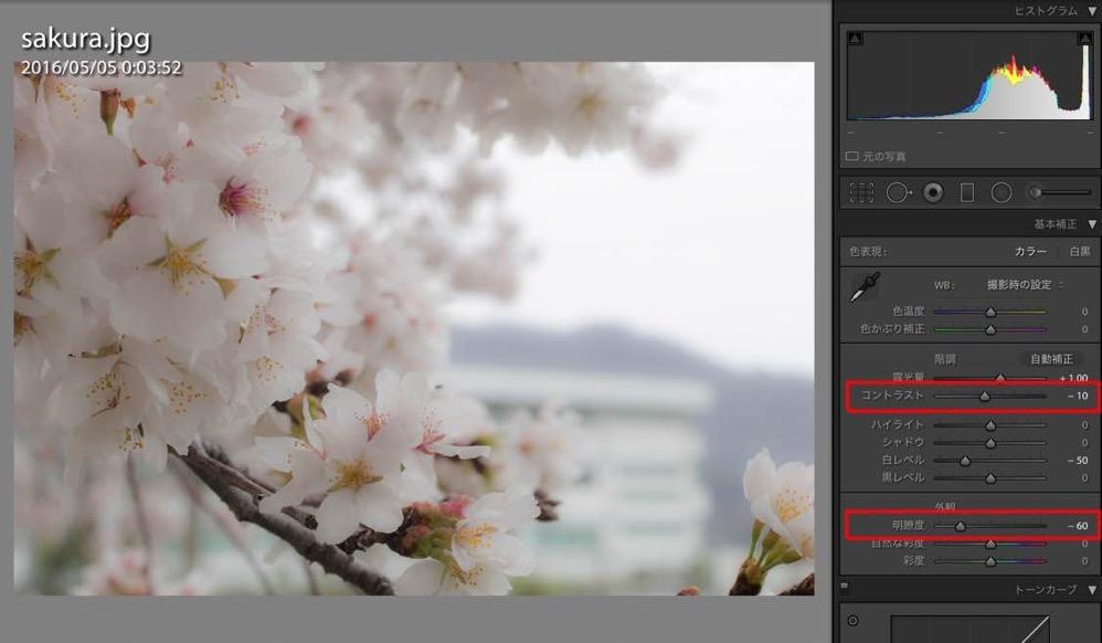 Sakura retouch 03
