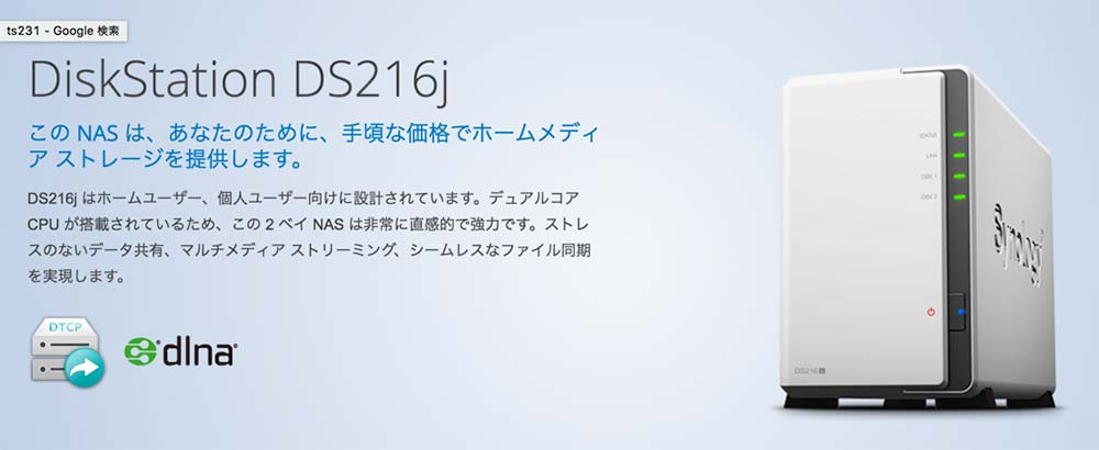 Ds216j