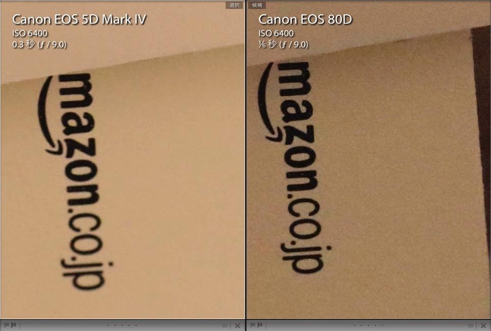 EOS 5D Mark Ⅳ vs EOS 80D Iso6400