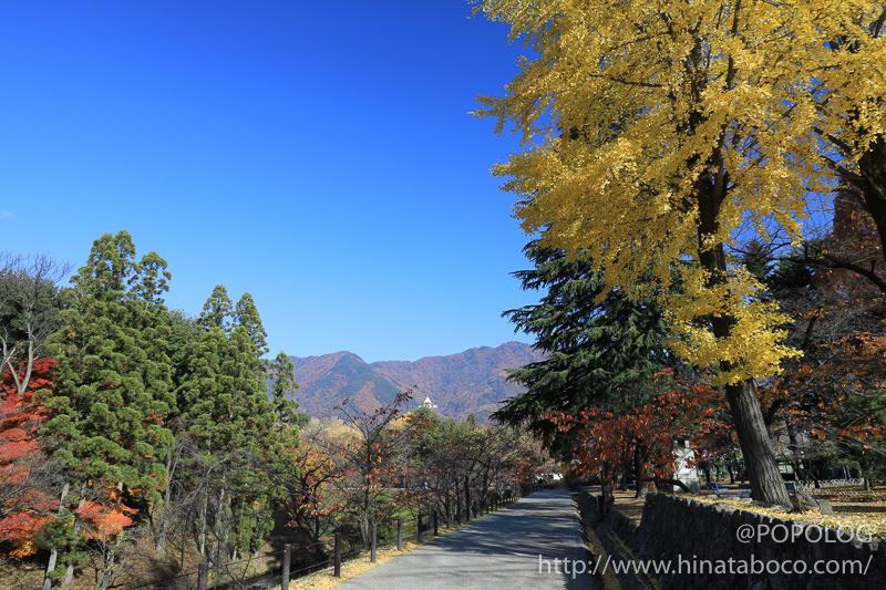 上田城公園のお堀の紅葉